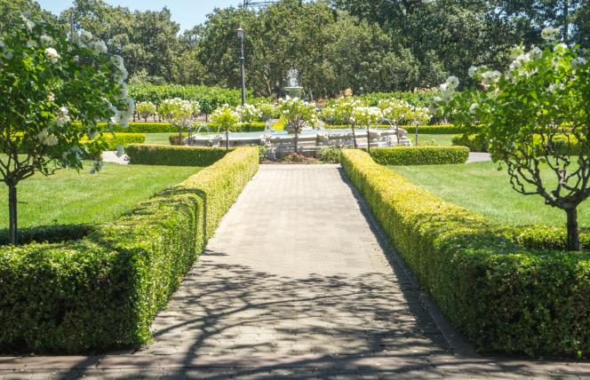 Ledson-Garden